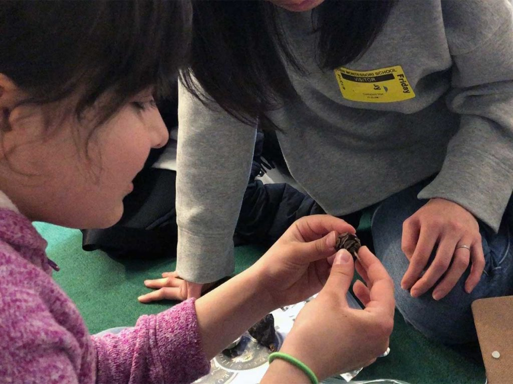 a child handles a seedpod with her mentor close by